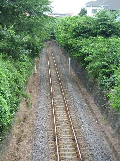 鹿島臨海鉄道(平井地区付近)
